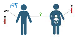 Можно ли сделать днк во время беременности